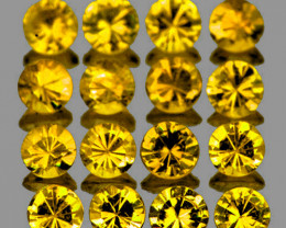 2.50 mm Round 16 pcs 1.33cts Yellow Sapphire [VVS]