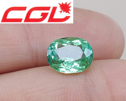 CGL-GRS Unheated  3.18 CT Lagoon Bluish Green Kunar Tourmaline $550