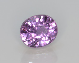 Natural Sapphire 1.40 Cts