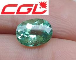 Custom Cut! CGL-GRS Unheated 2.90 CT Green Kunar Tourmaline $1,100