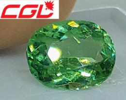 Gorgeous! CGL-GRS Unheated 2.60 CT Green Kunar Tourmaline $580
