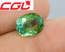 NR! CGL-GRS Unheated  3.18 CT Lagoon Bluish Green Kunar Tourmaline