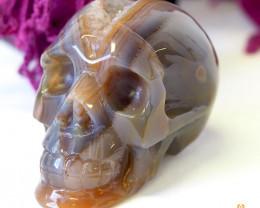 Crystal Jasper Skull with Free Bonus Skull Scarf WS 1013 - 495