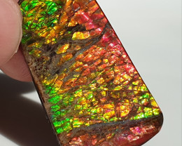 33,80ct Ammolite - Bright Colours & Dragonskin pattern!
