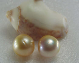 collective PIECES south sea  pearl 20.10cts
