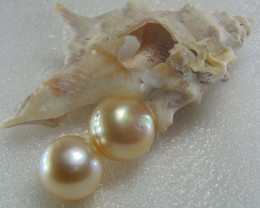 collective pieces  sea water pearl 18.90cts