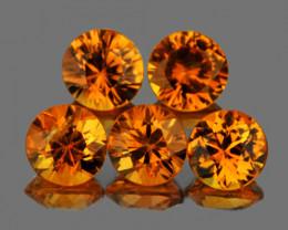 3.30 mm Round 5 pcs Orange Sapphire [VVS]