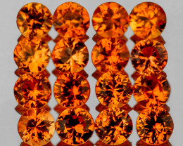 2.00 mm Round 20 pcs 1.02cts Orange Sapphire [VVS]