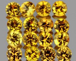 2.50 mm Round 16 pcs 1.27cts Yellow Sapphire