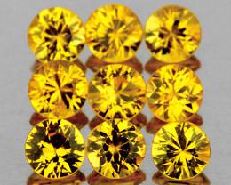 2.80 mm Round 9 pcs Yellow Sapphire [VVS]