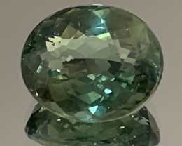 4.54ct Bright Forest Green Apatite Gem - No reserve! Collector's joy
