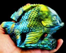 Genuine 2389 cts Amazing Flash Labradorite Fish