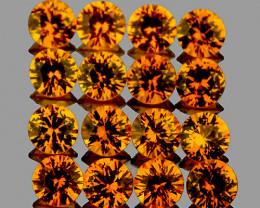 1.50 mm Round Machine Cut 50 pcs Golden Yellow Sapphire [VVS]