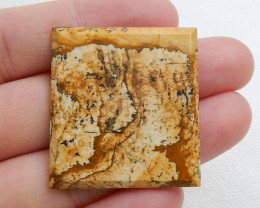 40.55 ct Natural Picture Jasper Fancy Cabochon Gemstone C627