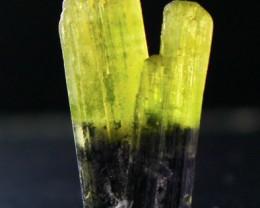 13.40 Cts Beautiful, Superb  Green CapTourmaline Crystal