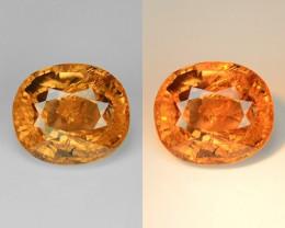 1.25 Ct Natural Colour Change Garnet Top Quality Gemstone. CG 05