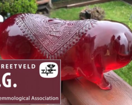 2 KG RED AMBER CARVING PIG  - VERY OLD ,Certificate