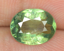 1.54 CTS UNHEATED GREEN COLOR  NATURAL  APATITE LOOSE GEMSTONE