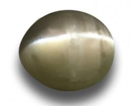 Natural Unheated Green Catseye |Loose Gemstone|New| Sri Lanka