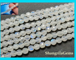 16inch line 8mm to 9mm White Rainbow Moonstone faceted round beads