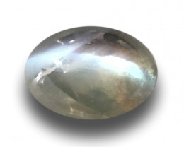 0.62 Carats| Natural Unheated Green Catseye |Loose Gemstone|New| Sri Lanka