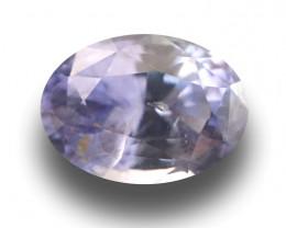 Natural Purple Sapphire  Loose Gemstone  Sri Lanka - New