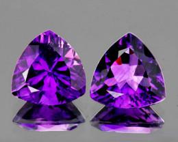 6.00 mm Trillion 2 pcs 1.38cts Purple Amethyst [VVS}