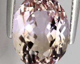 ⭐6.15ct Pale Pastel Ametrine VVS  stone - NR