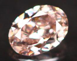 Natural Argyle 0.12Ct Purplish Pink Diamond 6904