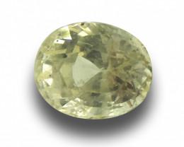 Natural Unheated Yellow Sapphire|Loose Gemstone|New| Sri Lanka