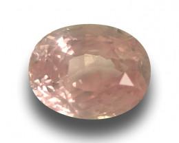 Natural Unheated Orangish Pink Sapphire |Loose Gemstone| Sri Lanka