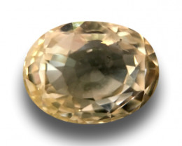 Natural unheated Yellow Sapphire | Loose Gemstone | Sri Lanka