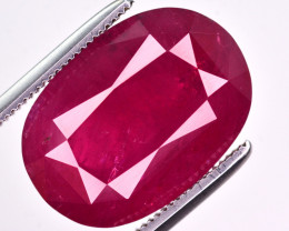 11.70 Ct Natural No Heat Ruby Gemstone