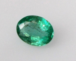 Natural Emerald - 0.80