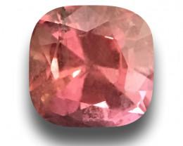GIA Certified Natural Pink Sapphire |Certified | Sri Lanka