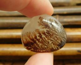 Montana agate cabochon bead (G0465)