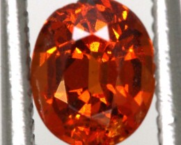 0.95 CTS GARNET FACETED STONE PG-2319