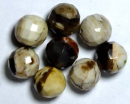 PETRIFIED WOOD BEADS, (8PC) 63.35CTS NP-1020