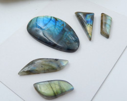 Wholesale Natural Flashy Labradorite Faceted Cabochons C908