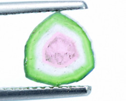 NR 2.30 cts Perfectly Shaped Watermelon Tourmaline Slice