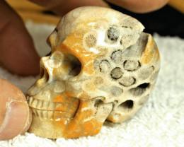 1$NR - 392.0 Carat Coral Skull - Conversation Starter