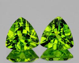 7.00 mm Trillion 2 pcs 2.10cts Green Peridot [VVS]