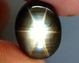 4.63 Carat Thailand Black Star Sapphire