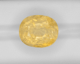 Yellow Sapphire, 36.15ct - Mined in Burma | Certified by GRS