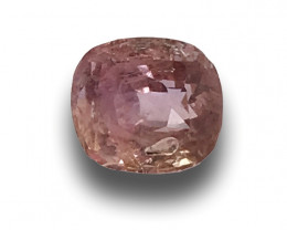 Natural Unheated Padparadscha Sapphire|Loose Gemstone|New