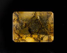 Quartz Dendritic 16.95 ct Brazil