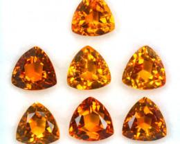 6.67 Cts Natural Golden Orange Citrine 6.5 mm Trillion Cut 7 Pcs Brazil