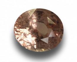 Natural Padparadscha |Loose Gemstone| Sri Lanka - New