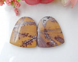 30cts Chohua Jasper Cabochon Pair, Chohua Jasper Beads ,jewelry making C983