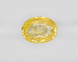 Yellow Sapphire, 9.03ct - Mined in Sri Lanka | Certified by IGI